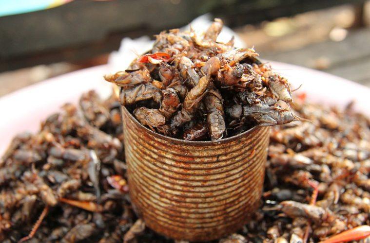 Kambodschanische Snacks