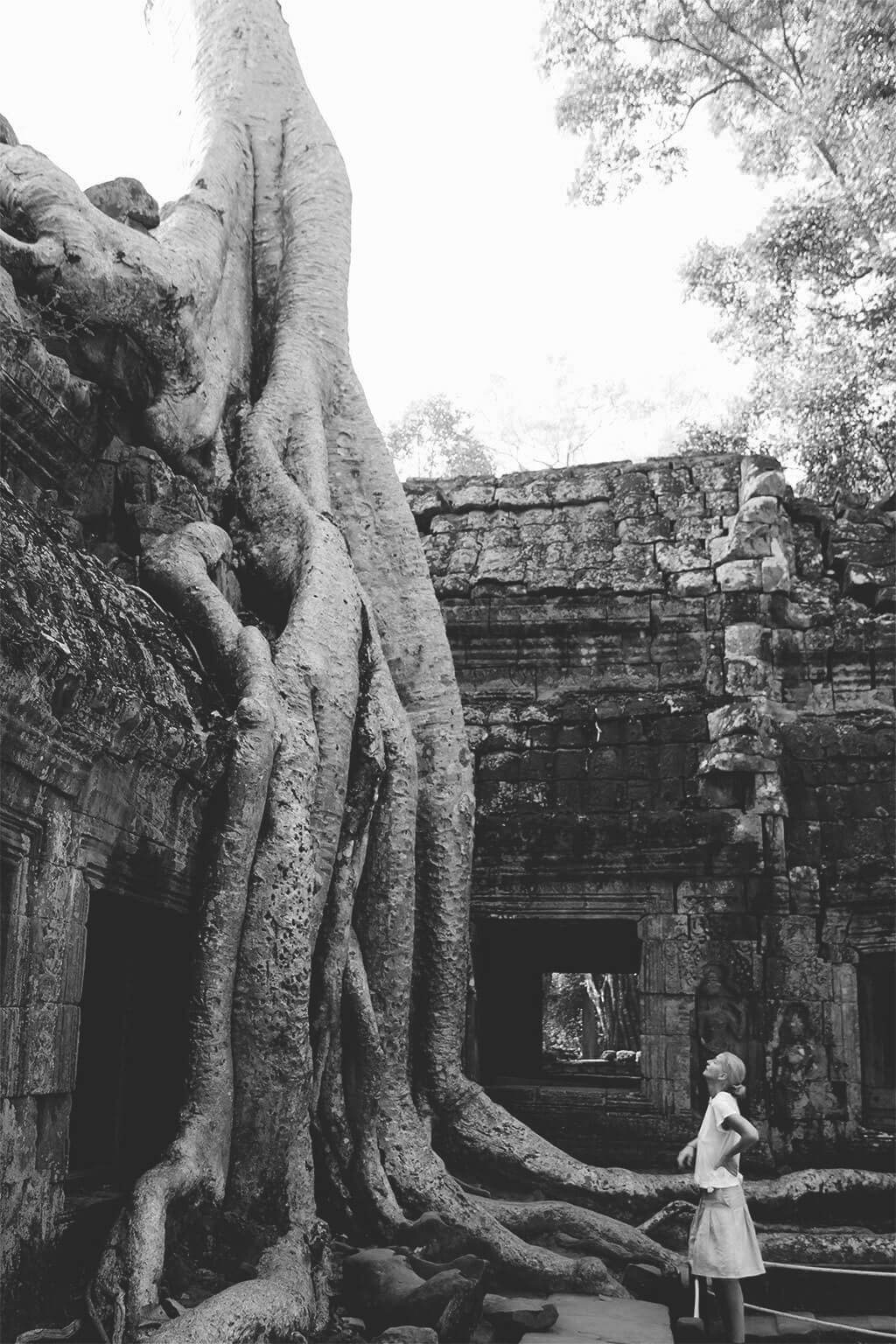 Ta Prohm - Angkor Tempel