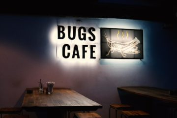 Terrasse vor dem Bugs Cafe in Siem Reap