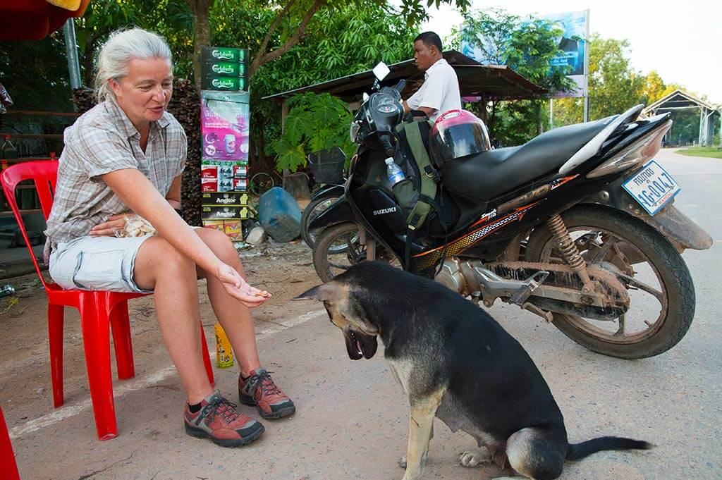 Hündin füttern in Kambodscha