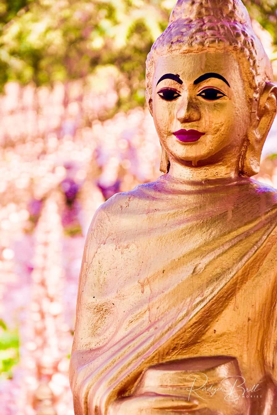 Buddhismus in Kambodscha: Goldene Buddha Statue