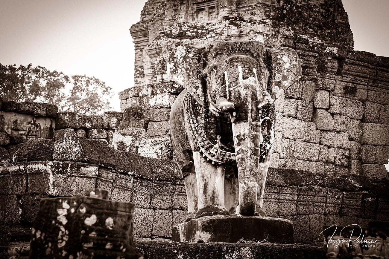 Östlicher Mebong - Elefant aus Stein, Angkor Tempel