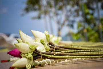 "Lotus: Wat Puth Kiri ""Berg der 10.000 Buddhas"" in Kambodscha"