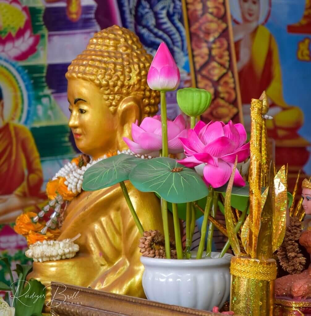 Pinker Lotos aus Plastik, Kambodscha