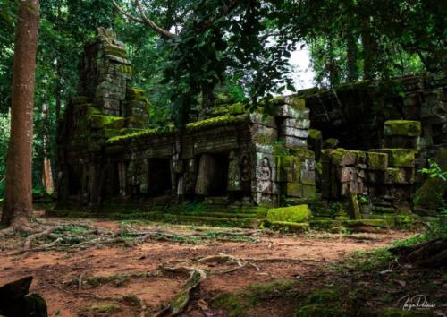 ta-prohm-angkor-tempel-regenzeit-gruen-osteingang