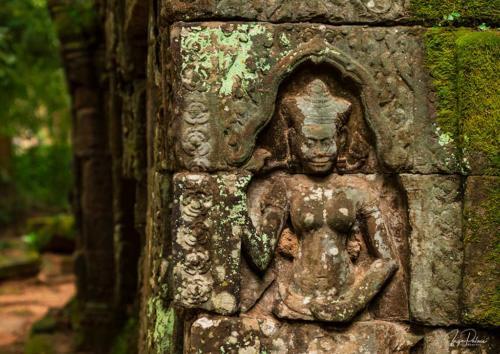 ta-prohm-devata-regenzeit-gruen-angkor