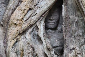 Ta Prohm Sculpture, Angko
