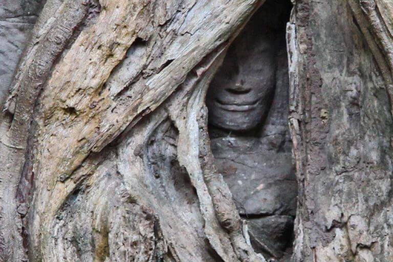 Ta Prohm Sculpture, Angko