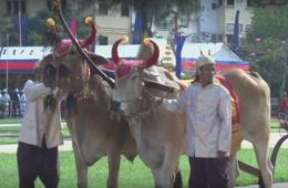 Royal Ploughing Ceremony | Screen Video Hanuman Travel