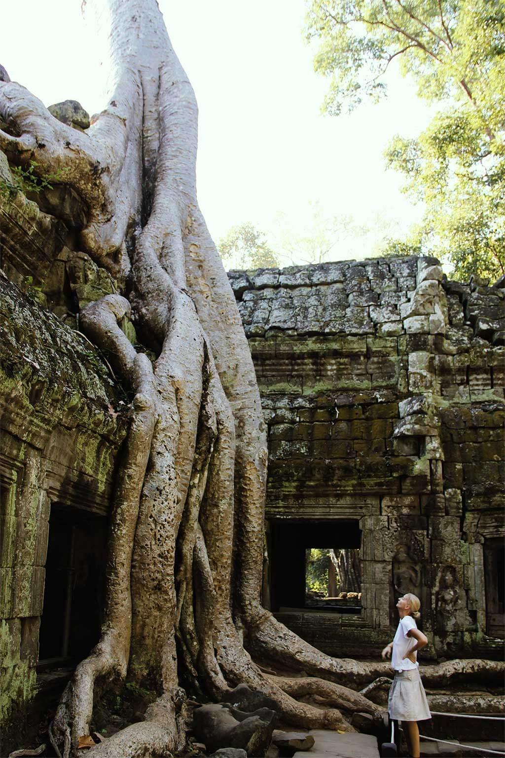 Ta Prohm Temple - Angkor, Cambodia