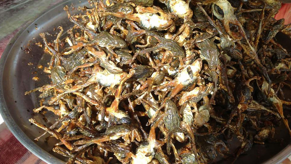 Fried Frogs, Market Siem Reap