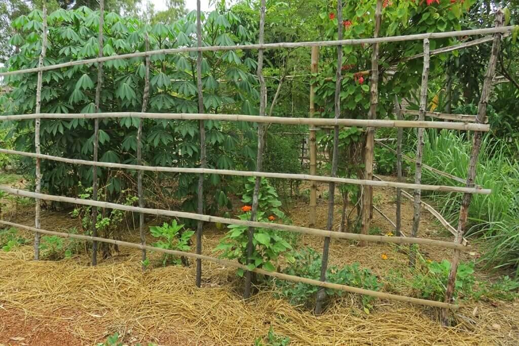 Camborea Community Garden