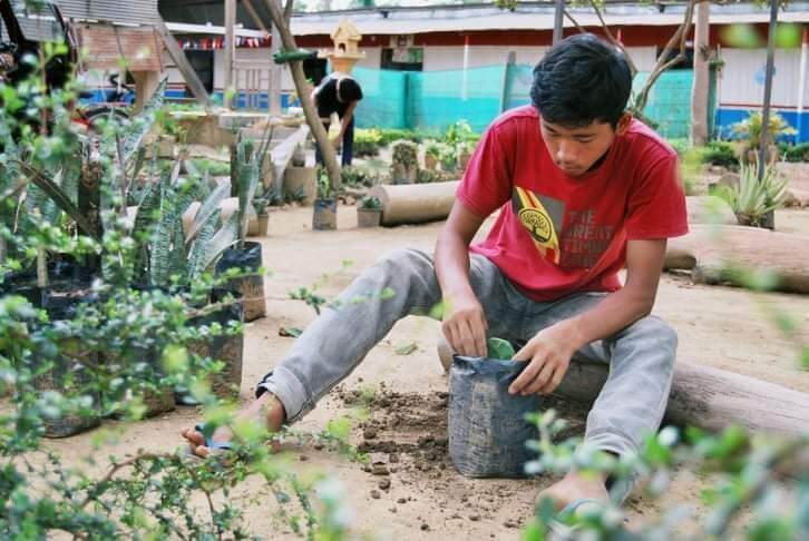 Planting on the school grounds, Oase e.V. - Aid Organisation in Battambang